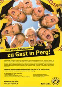 bvb-fussballschule